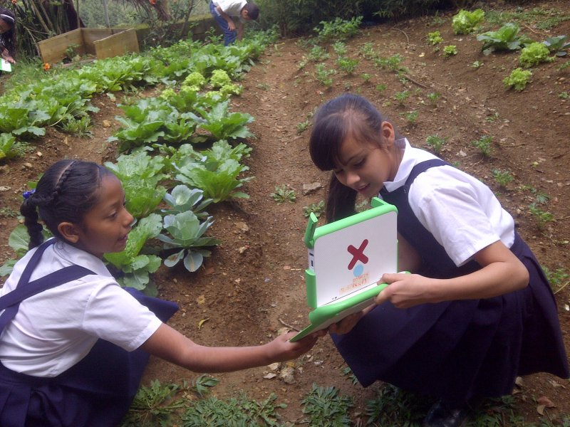 school 2013 girls garden